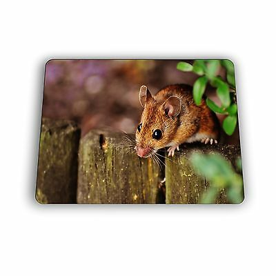 Mouse on the Fence Computer Mouse Pad Size Mousepad 3