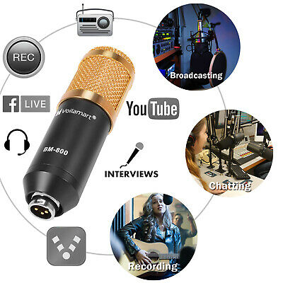 BM800 Condenser Microphone Kit Studio Pro Audio Recording Arm Stand Shock Mount 9