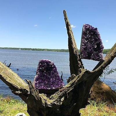 Amethyst Druze Crystal Cluster With Cut Base ~ EXTRA LARGE Size Specimen 9