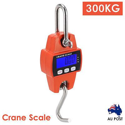 Mini Portable Crane Scale 300kg 0.1kg LCD Digital Electronic Hook Hanging Scale 7