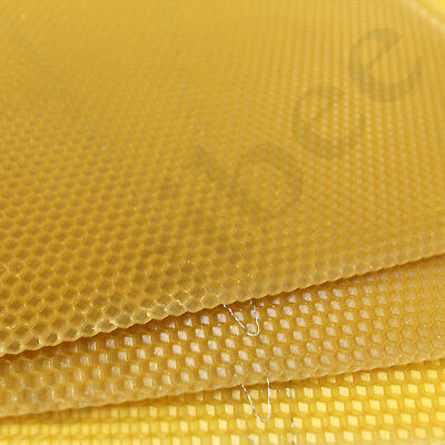 National Bee Hive Deep Brood Wired Wax Foundation Sheets Beekeeping Beehive 5