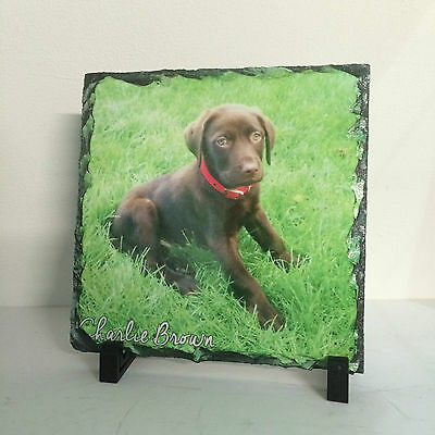 Pet Memorial Plaque, Square Photo Slate Print (not engraved) ANY PIC Dog Cat etc 2