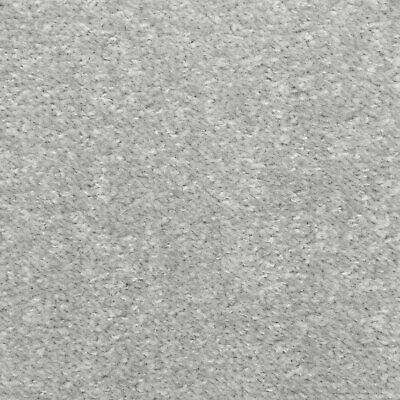 Silver Grey Oxford Quality Twist Carpet Cheap Stain Resistant Felt Backing 4m 5m 3