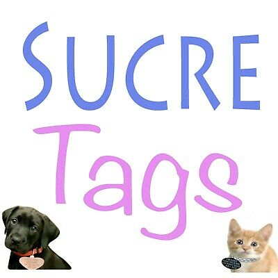 Slide On Collar Engraved Rectangle Id Name Personalised Pet Dog Cat Tag Tags 4