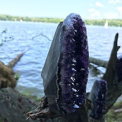 EXTRA LARGE POLISHED Amethyst Druze Crystal Cluster With Cut Base ~ 2 Pounds ea. 8