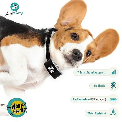 Bark Collar for Dogs Rechargeable Anti Bark Training Device Auto Stop Barking 7