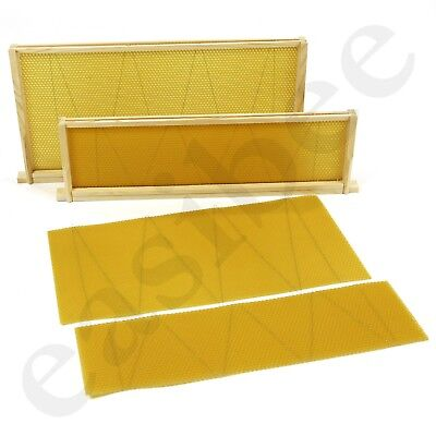 Langstroth Beehive Wired Wax Foundation Sheets and Frames Beekeeping Easibee