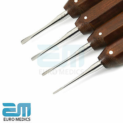 Set of 4 Dental Implant Oral Surgery Root Luxating Elevators Tooth Oral Surgical 2