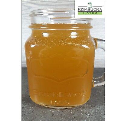 Kombucha Scoby, Organic, 200ml Of Liquid Starter Tea, Instructions Free Delivery 4