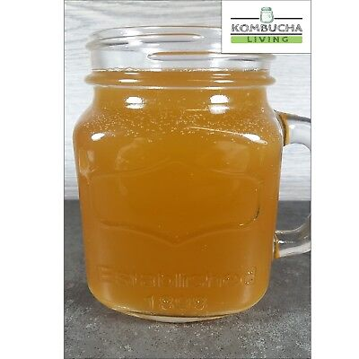 Organic Kombucha Scoby, 200ml Strong Starter Tea, Instructions, Free Delivery !! 4