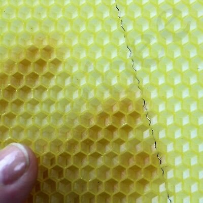 National Bee Hive Brood Wired 100% Natural Beeswax Wax Foundation Sheets Easibee