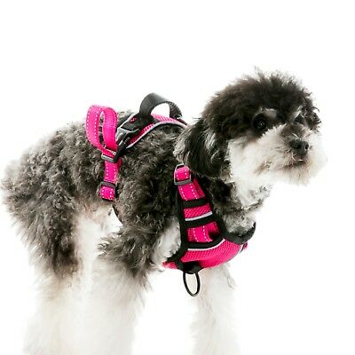 Dog Harness No-Pull Pet Harness Vest Adjustable Outdoor Reflective Easy Control 8