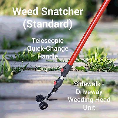 THE WEED SNATCHER, Crack and Crevice Weeding Tool 4