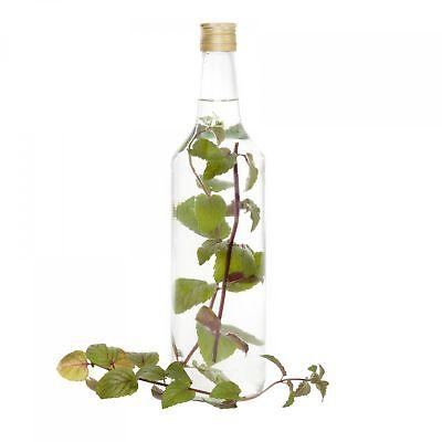 12er Set Glasflaschen 1L 1000ml Weinflaschen Likör Flaschen Schraubverschluss 2