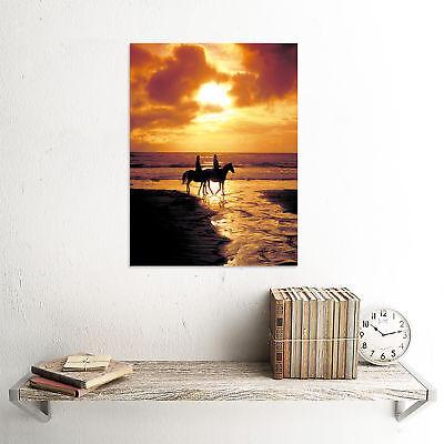 Mp Photography Seascape Beach Horses Sunset Ocean Sand Waves Art Poster Cc6054 2