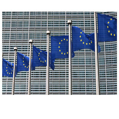 Europe Flag European Union Size 5 X 3 ft  High Quality Fabric With Brass Eyelets 3