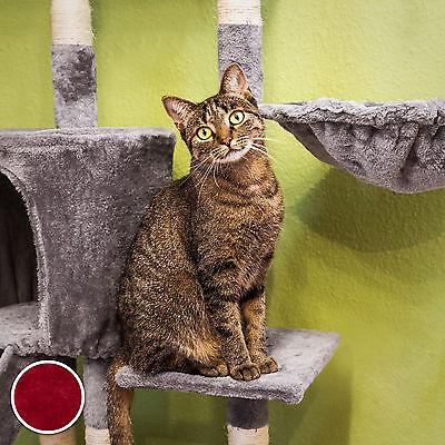 Arbre à chat griffoir grattoir jouet animaux douillet et peluché bordeaux 2