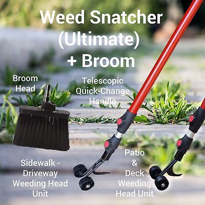 THE WEED SNATCHER, Crack and Crevice Weeding Tool 6