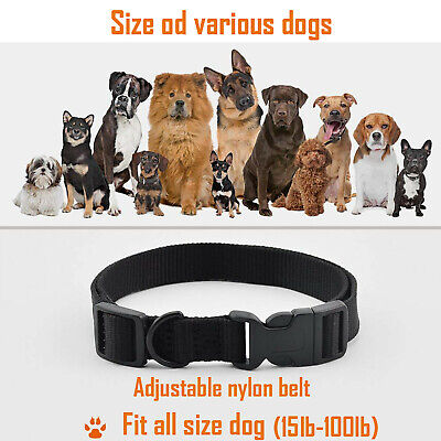 Dog Shock Training Collar Rechargeable LCD Remote Control Waterproof 330 Yards 8