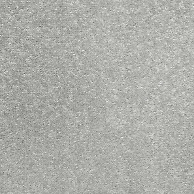 Silver Grey Oxford Quality Twist Carpet Cheap Stain Resistant Felt Backing 4m 5m 2