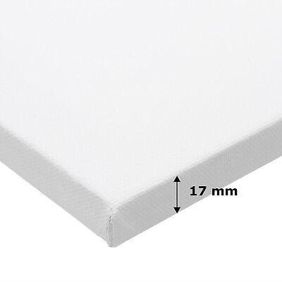 10 PURIST KEILRAHMEN zum MALEN 40x50cm blanko Leinwand auf Keilrahmen malfertig