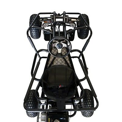 390cc ✶ Ultimate Off road go kart  ✶ FAE390XH ✶ Extreme adult size Dune buggy 8