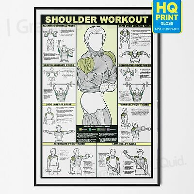 Professional LEGS WORKOUT Gym Fitness Training POSTER PRINT *LAMINATED* A4 A3