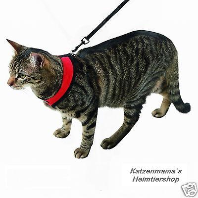 Katzengeschirr mit Leine Katzengarnitur hoher Tragekomfort Softgeschirr 3