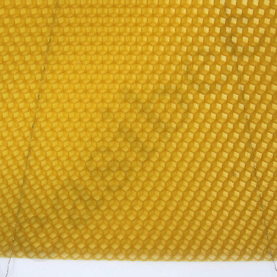 National Bee Hive Deep Brood Wired Wax Foundation Sheets Beekeeping Beehive 3