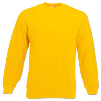 Fruit of the Loom Sweatshirt Set-In Herren Pullover Pulli Gr. S M L XL 2XL 3XL 10