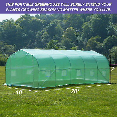 20'X10'X7' Walk in Greenhouse Steeple Green House Canopy Outdoor Plant Gardening 2