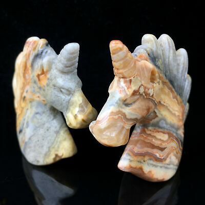 "2"" Carved crazy agate Unicorn Skull Natural Quartz Crystal Skull Healing 1pc 12"