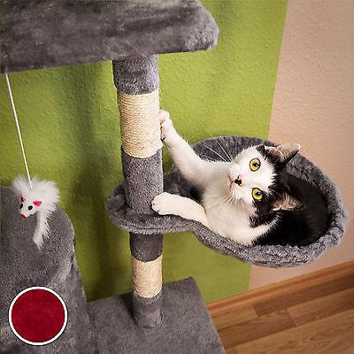 Arbre à chat griffoir grattoir jouet animaux douillet et peluché bordeaux 4