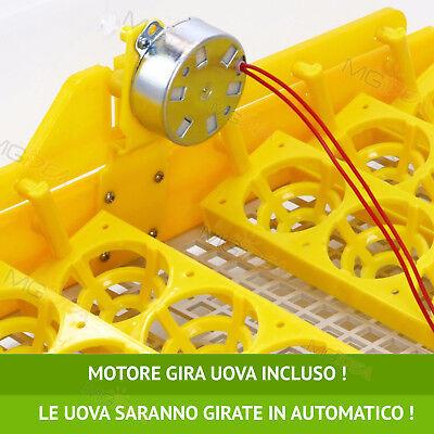 Incubatrice 48 Uova Professionale Automatica Girauova + Kit Svezzamento Gratis!! 2