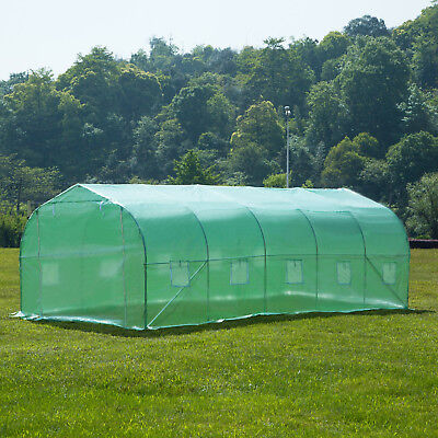 20'x10'x7' Larger Hot Green House Walk-In Greenhouse Plant Outdoor Gardening 2