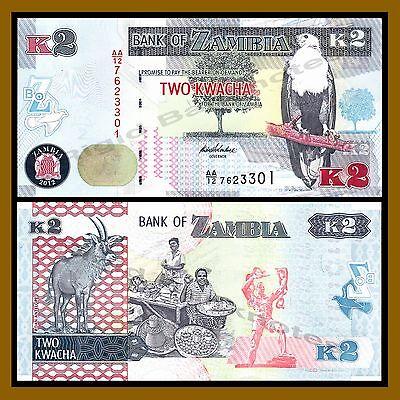 5 Pcs Set Zambia 2 5 10 20 50 Kwacha 2012 P-49-53 African Fish Eagle Unc