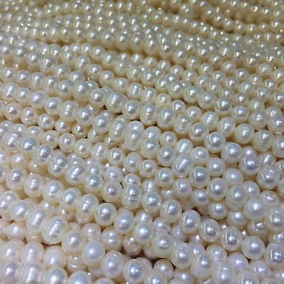 "Wholesale Natural Freshwater Pearl Gems Loose Beads Charm Findings  Strand 14"" 5"
