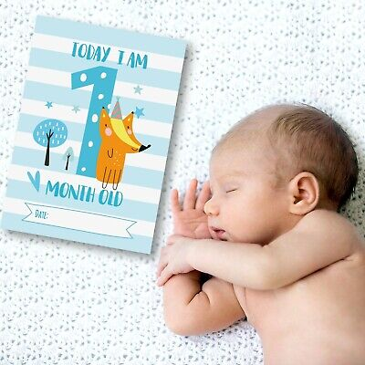 Baby Milestone Cards ~ 1st Year Memorable Moments Boy Age 3