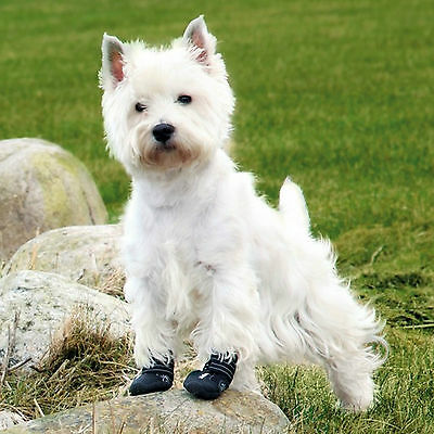 Walker Active Dog Boots Protect Paws From Ice Salt Heal Injured Paws XS - S19461 2