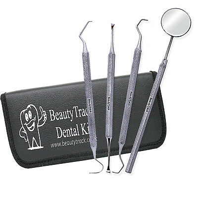 Pro Dental Set Dentist Scaler Instruments pick tool kit Tooth Cleaning Whitening 4