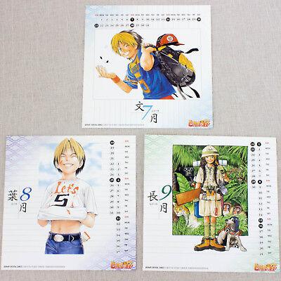 Hikaru no Go Calendar 2002 Shindo Sai Fujiwara Akira Toya JAPAN ANIME MANGA