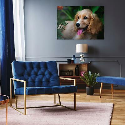 Print on Satin Photo Paper PULP Choose Size JARVIS COCKER Stylish Wall Art