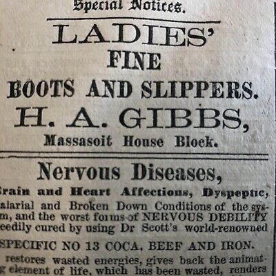10 RARE 1883 SPRINGFIELD MASSACHUSETTS newspapers w LOCAL ADVERTISING & News 4