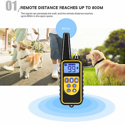 Rechargeable 2600 FT Remote Dog Training Shock Collar Waterproof Hunting Trainer 4
