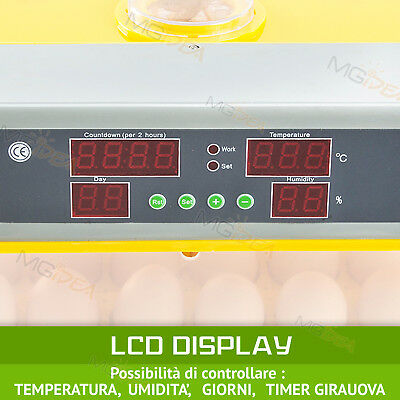 Incubatrice 48 Uova Professionale Automatica Girauova + Kit Svezzamento Gratis!! 5