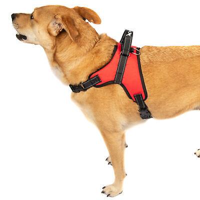 2-PACK Dog Pet Vest Harness Strap Adjustable Nylon Small Medium Large XL No Pull 12