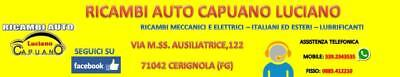 Kit Tagliando Fiat Punto Evo Gpl 1.4 8V 57Kw 77Cv + Olio Selenia Multip. Gas 5