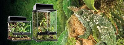 Exo Terra Reptile Glass Natural Medium X Tall Terrarium 24 X 18 X 36