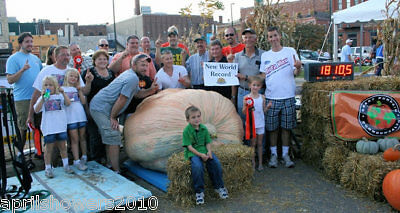 Pumpkin Dill's Atlantic Giant Guiness World Record Size 3 HUGE SEEDS