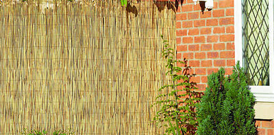 Natural Peeled Reed Screening Roll Garden Screen Fence Fencing Panel Wooden 4m 8